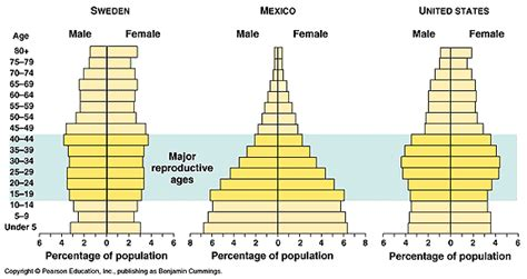 Age Structure Diagram by Ii Population Apes Of Today
