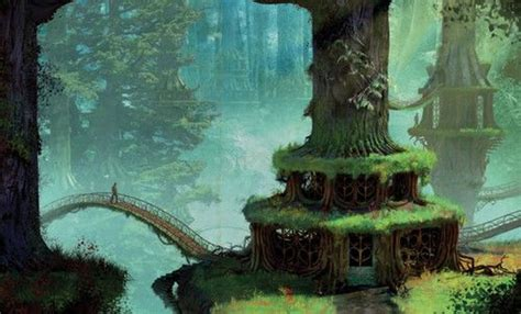 bookselveseragonfantasyfairytaleforest