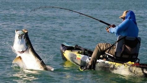 Best Fishing Boat Brands For The Money by Salmon Fishing Is Badass