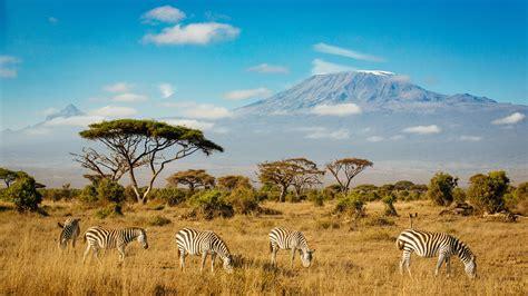 national kilimanjaro amboseli park hd desktop wallpapers kenya mount laptop 4k zebras mobile phones ultra southern computers tablet animals 2160