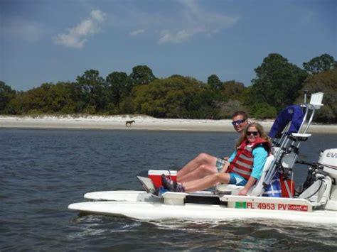 Amelia Island Catamaran Tour by Wild Horses On Cumberland Island Picture Of Backwater