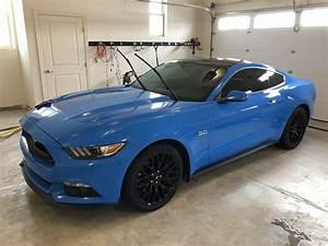2017 Mustang GT Grabber blue | SVTPerformance.com