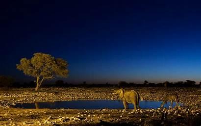 Africa Desktop Wallpapers Mobile Gate Park Highlands