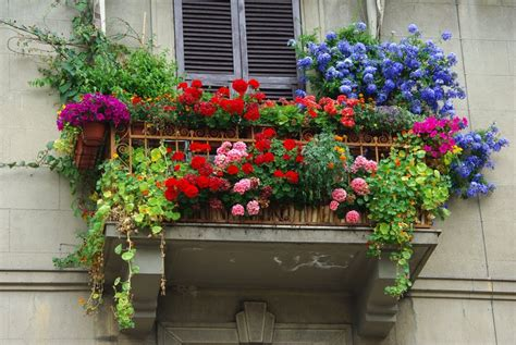 terrazze fiorite come arredare il balcone di casa o il terrazzo