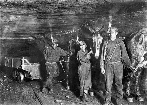 west virginia coal mines  miners mules working