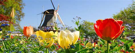 cruise holland tulip river cruise collette