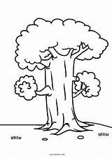 Coloring Pages Tree Trees Printable Cool2bkids Children Drawing sketch template