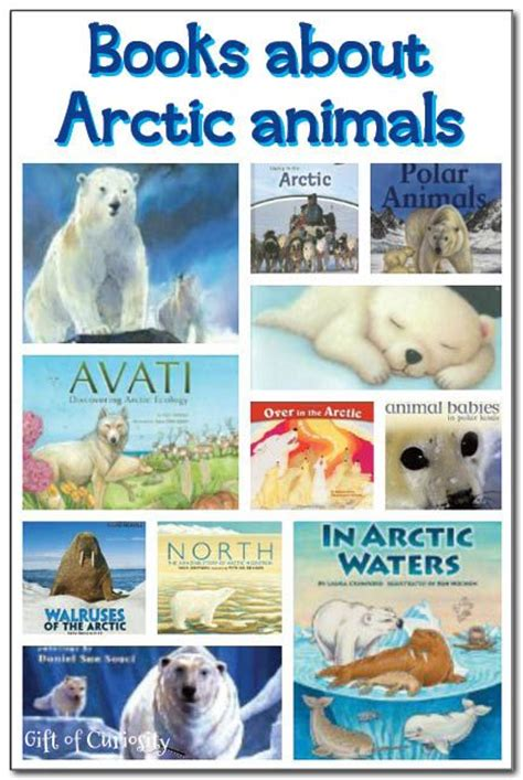 20 books about arctic animals for 857 | 837ee057d2859405a2875a3cd87cc503