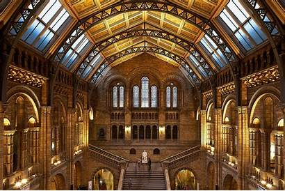 Museum History Natural Londres Annee Toute