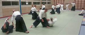 Aikido, a new balance in the life of the Expat | expatsHaarlem