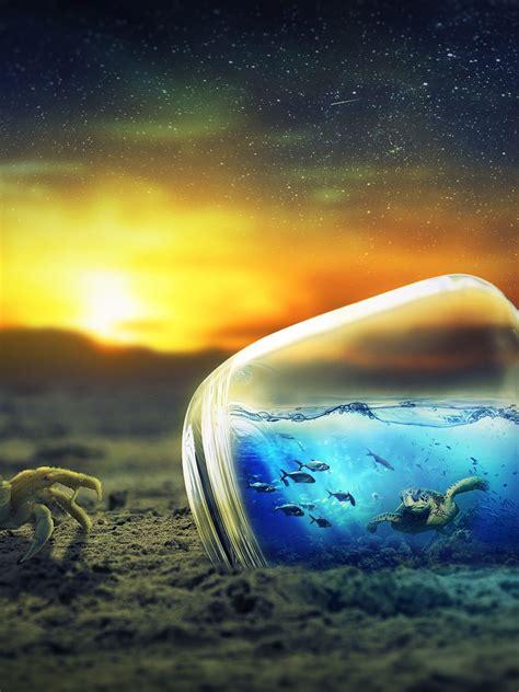 wallpaper sunset crab bottle underwater  creative