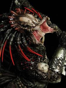 King of the Hunters - Alien Vs. Predator - Spikey Bits