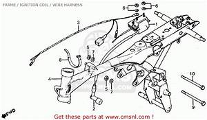 Big Image Of Frame    Ignition Coil    Wire Harness Schematic