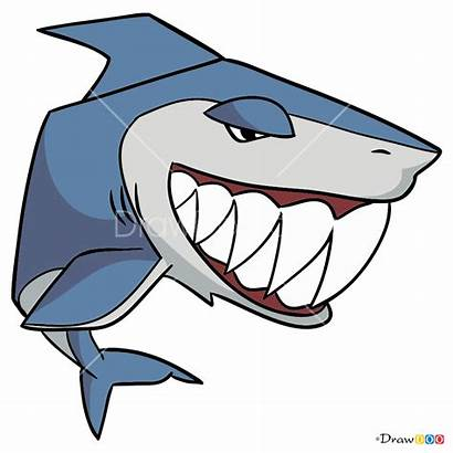 Shark Draw Jam Animal Step Tutorials