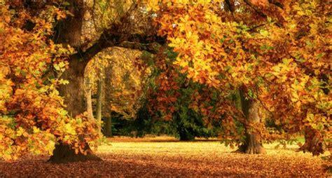 oktober groenis gartenkinder
