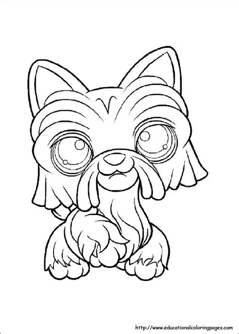 pet shop coloring pages   kids