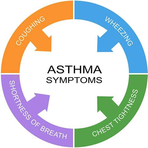 Control Asthma In Your Home Environment  Nc State. Organizational Charting Software. Credit Cards That Offer Cash Back. Ccne Accredited Nursing Schools. Pet Insurance For Older Pets. Online It Training Sites Elga Online Banking. Al Jazeera Arabic Live Tv Steve Hawkins Homes. Tax Consultants Of Washington. United Healthcare Part D Plans
