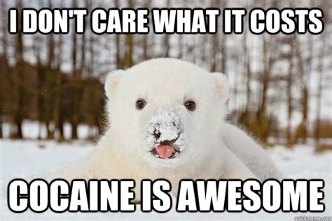 Bear Cocaine Meme - i don t care what it costs cocaine is awesome polar bear junkie quickmeme