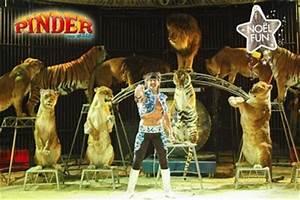 Cirque Pinder Paris 2016 : cirque pinder pas cher 15 au lieu de 35 ~ Medecine-chirurgie-esthetiques.com Avis de Voitures