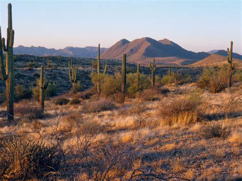 Desert Hiking in Arizona