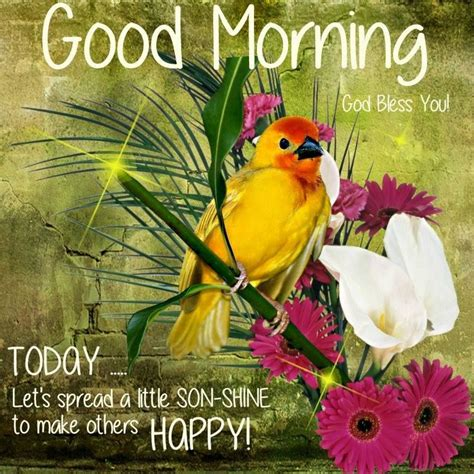 good morning lets   happy pictures