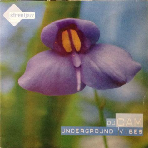 Dj Cam  Underground Vibes (re