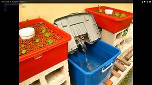 Aquaponic System For Beginners  Guide    Home Aquaponic