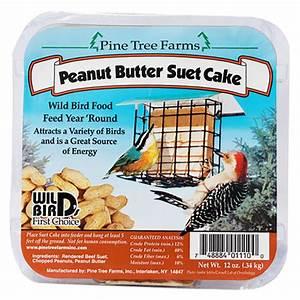 Duncraft com:Peanut Butter Suet, 12 Cakes
