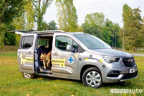 porta cani per auto auto per cani quale scegliere e come trasportarli