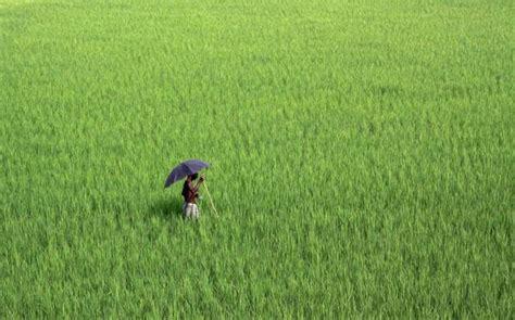 farmers  day  hindu