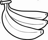Banana Drawing Clipart Bananas Sketch Template Coloring Drawings Templates Paintingvalley Webstockreview sketch template