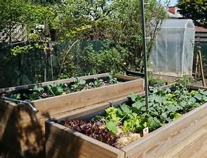 Gurken Im Hochbeet : hochbeet bepflanzung mein sch ner garten forum ~ Orissabook.com Haus und Dekorationen