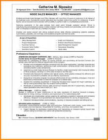 Executive Summary On A Resume by Executive Summary Resume Resumes