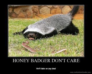 Meme Honey Badger - a meme rable year 2011 s most ridiculous internet memes slide 7 ny daily news