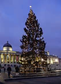 christmas tree trafalgar square london 169 christine matthews geograph britain and ireland