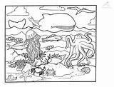Squid Coloring Pages Ocean Printable Animals Colouring Print Fish Giant Colossal Animal Attacking Ships Sea Viewed Kb Adult Getcoloringpages Whale sketch template