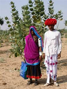 Meet the Bishnoi | Eastern tribal encouters: Sharing ...