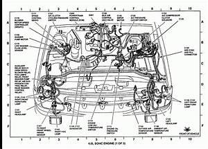 2001 Ford Focus Engine Bay