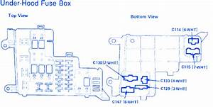 Honda Accord Lx 1989 Fuse Box  Block Circuit Breaker Diagram