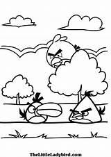 Angry Birds Colorir Coloring Desenhos Colorear Dibujos Pintar Ausmalbilder Kolorowanki Druku Bird Printable Nature Kinder Drucken Beste Sie Disney Dragon sketch template
