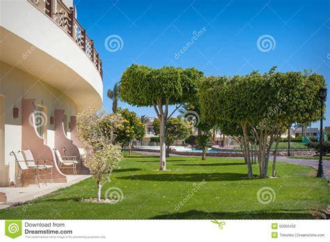 parco alberi verdi e un balcone fotografia stock immagine di verde svago 50050432