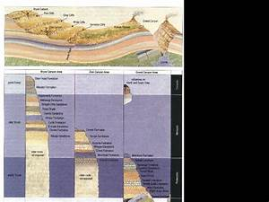 Creationist Geologic Time Scale
