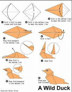 Wild Duck - Easy Origami instructions For Kids