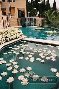 Swimming Pool Dekoration : floating flowers in the pool swimming pools pinterest floating flowers pools and flower ~ Sanjose-hotels-ca.com Haus und Dekorationen