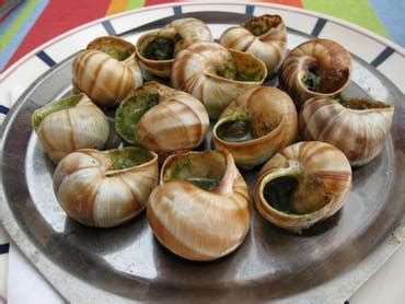 cuisine escargots archive escargot endangered