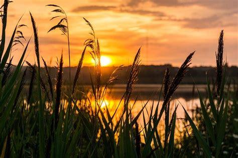 sunrise hope morning  photo  pixabay