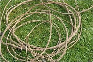 Kränze Binden Aus ästen : kranzrohling einfach selber machen handmade kultur ~ Lizthompson.info Haus und Dekorationen