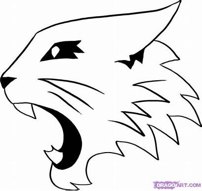 Wildcat Draw Musical Wildcats Coloring Step Cool