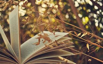 Books Background Wallpapers Nature Author Wall Fall