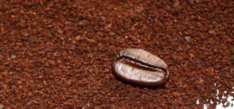 Should You Freeze Ground Coffee?